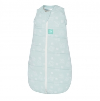 ergoPouch - 2.5 tog ergoCocoon 2in1 swaddle & sleeping bag, mint star
