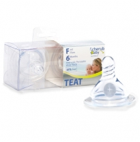 cherub baby - wide neck teats 2pack, fast flow